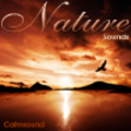 Thumbnail Nature Sounds - instant download CD of relaxing sounds