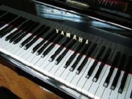 Pay for Learn to Play The Piano, Guitar and Bass Overnight