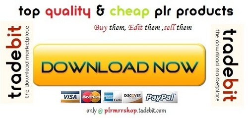 Thumbnail ==== Nearly a Decade of Internet Marketing Experience! ----- - Quality PLR Download